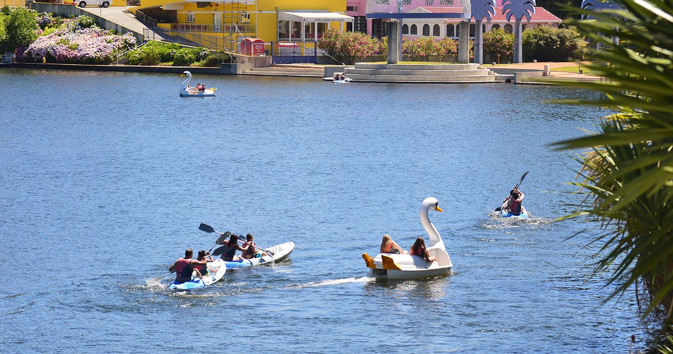 Canoas e Cisnes no Parque Azul